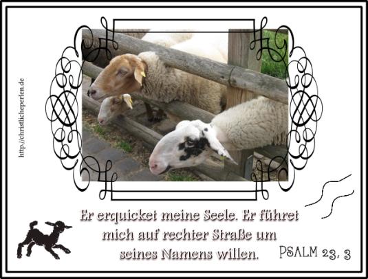 Psalm23drei