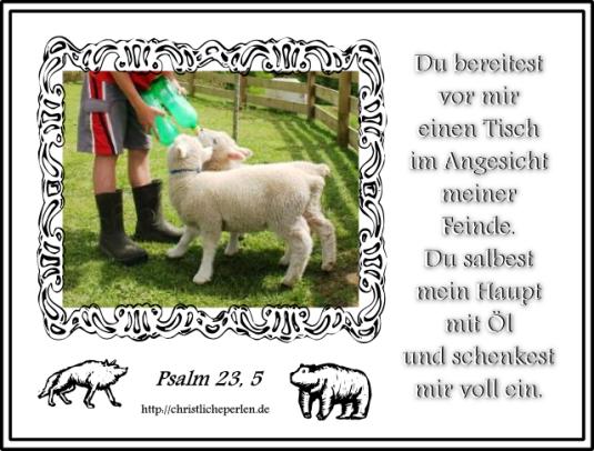 Psalm23fünf