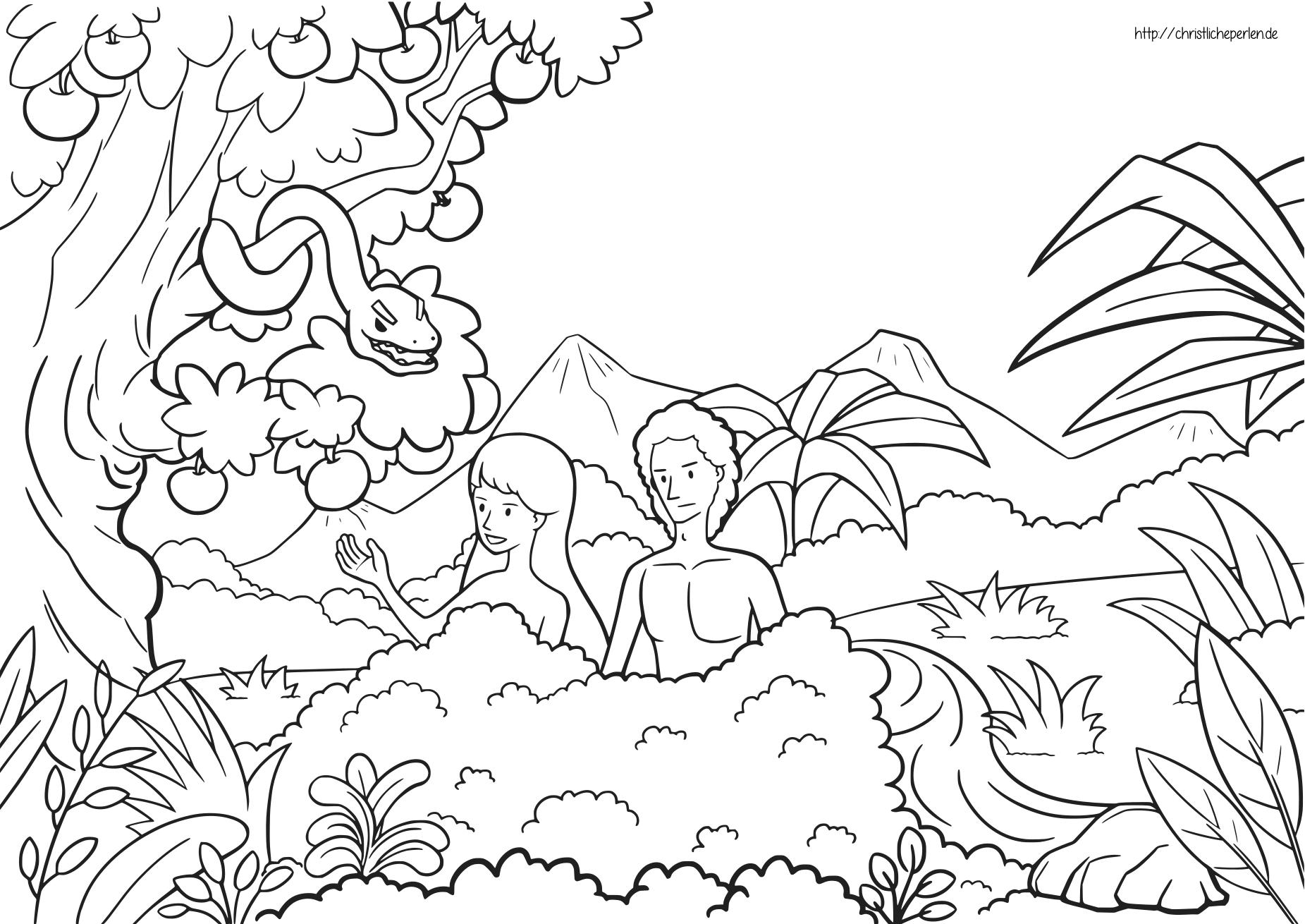 Adam und Eva ausmalen / Adam and Eve Coloring Pages | Christliche Perlen